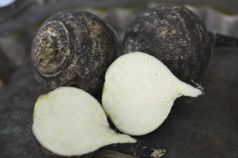 Crna rotkva - ljekoviti korijen paprenog okusa